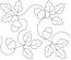 Acorn Leaves Panto