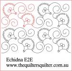 Echidna E2E